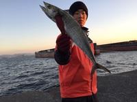 海のコトなら大谷くんに聞け!!若干、高校1年生の海釣りマスター!