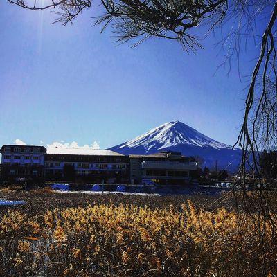 2020年富士山9499087422911_4476996329356132352_o.jpg