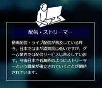 ストリーマー.JPG